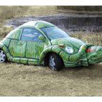 żółwia skorupa